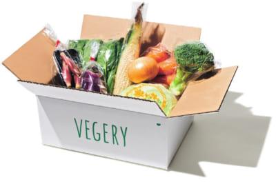 九州産のオーガニック野菜が最短1時間で届くVEGERY ORGANICS