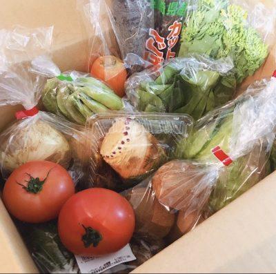 スタイリストの「ポチ買いおこもり名品」1歳息子も大好き野菜セット