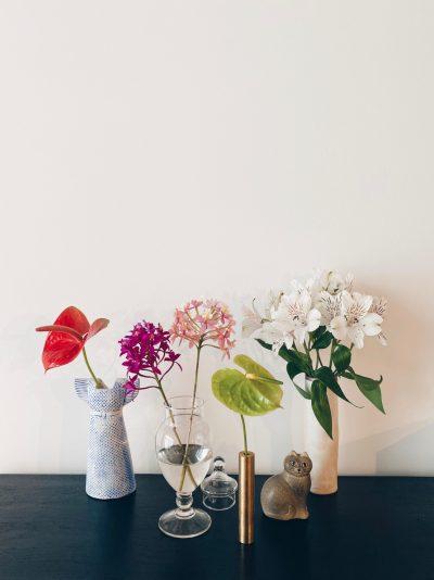 人気フラワーショップの今だけプランが多数!おうちに花束を届けよう