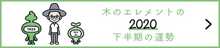 【2020年下半期の運勢】木のエレメント|奇数年生まれ