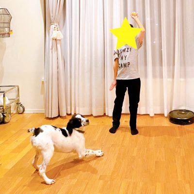 モデル牧野紗弥さん「子ども1人1匹ペットを飼うことにした理由」